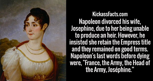 """Napoleon divorced his wife, Josephine, due to her being unable to produce an heir. However, he insisted she retain the Empress title and they remained on good terms. Napoleon's last words before dying were, """"France, the Army, the Head of the Army, Joséphine."""""""