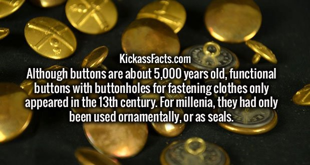 Although buttons are about 5,000 years old, functional buttons with buttonholes for fastening clothes only appeared in the 13th century. For millenia, they had only been used ornamentally, or as seals.