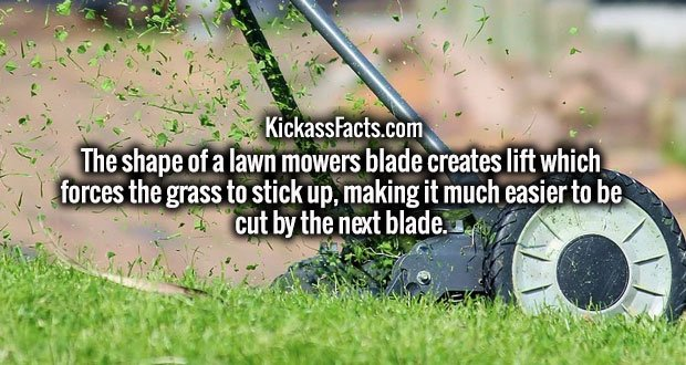 The shape of a lawn mowers blade creates lift which forces the grass to stick up, making it much easier to be cut by the next blade.