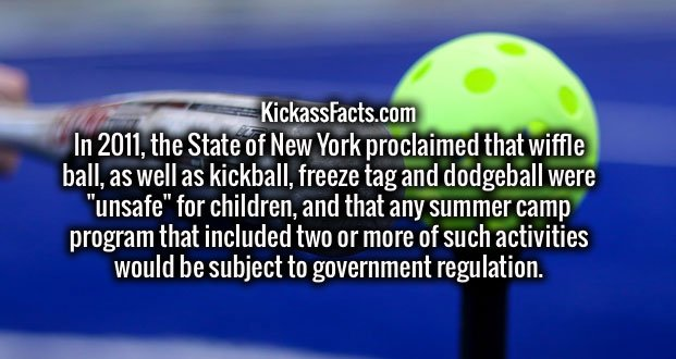 "In 2011, the State of New York proclaimed that wiffle ball, as well as kickball, freeze tag and dodgeball were ""unsafe"" for children, and that any summer camp program that included two or more of such activities would be subject to government regulation."
