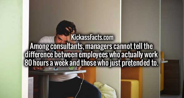 Among consultants, managers cannot tell the difference between employees who actually work 80 hours a week and those who just pretended to.